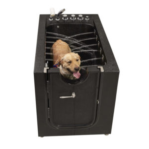 infusion microbubble therapy dog or pet walk in spa with ozone sterilization