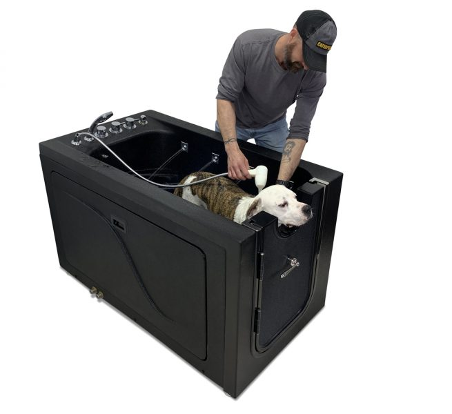 therapeutic microbubble dog washing grooming station for treatment of common skin problems